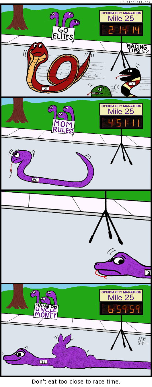 comic strip about racing tips for marathons with snakes, bunnies, and eating to close to the race