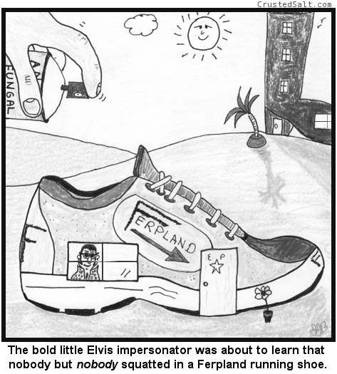 a comic with an Elvis impersonator living in a shoe in a land of shoe-houses with a hand spraying anti-fungal spray