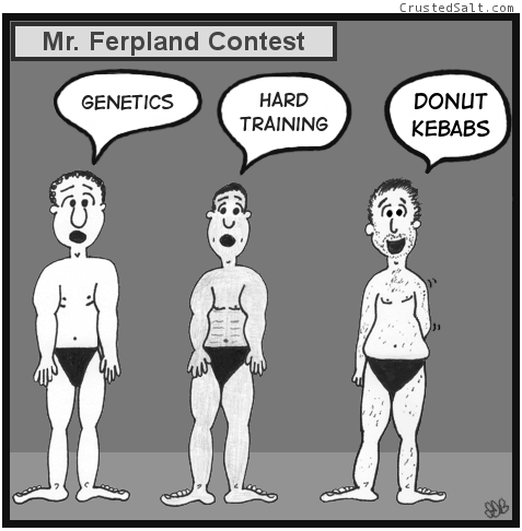 a comic with three men competing at the Mister Ferpland bodybuilding contest